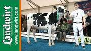 5. Dairy Grand Prix