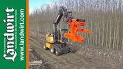 Energieholz Feldtag 2013