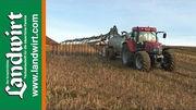 Grundd�ngung von Mais