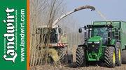 Energieholz Feldtag 2014