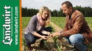 Bodenbearbeitung bei Mais
