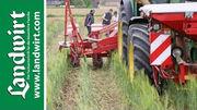 Erosionsschutz beim Maisanbau