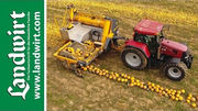 Agro-Stahl Ph�nix K�rbiserntemaschine