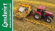 Agro-Stahl Phönix Kürbiserntemaschine