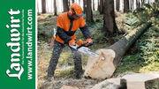 Gefahren bei der Waldarbeit