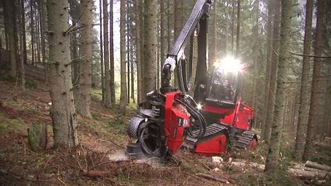 Waldfieber 2 - Zeit für Waldarbeit